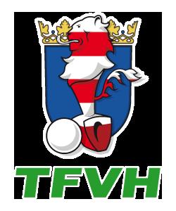 Tischfussballverband Hessen
